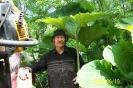 2008 Тропа самурая 3